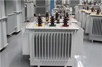普陀油浸式变压器结构图